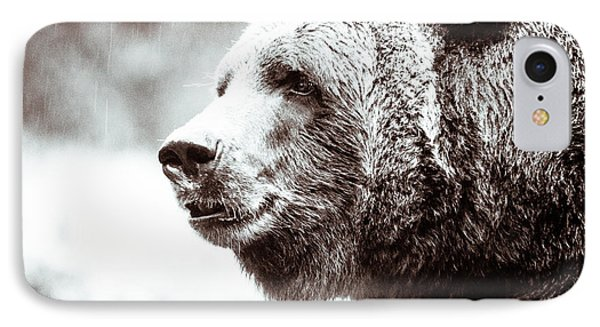 Grizzly In Black And White IPhone Case by Wade Brooks