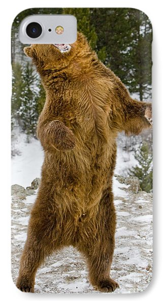 IPhone Case featuring the photograph Grizzly Standing by Jerry Fornarotto