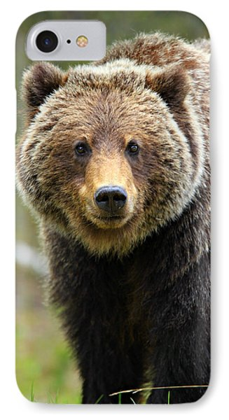 Grizzly Phone Case by Stephen Stookey