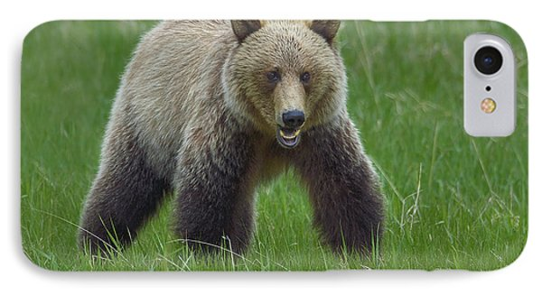 Grizzly Phone Case by Tony Beck
