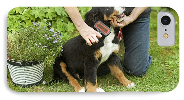Grooming Bernese Mountain Puppy Phone Case by Jean-Michel Labat