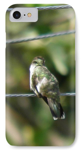 IPhone Case featuring the photograph Grooming Hummer by Nick Kirby