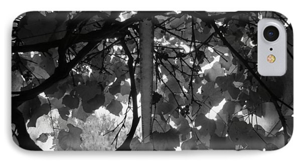 IPhone Case featuring the photograph Gropius Vine - Black And White by Joseph Skompski