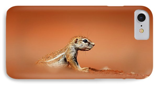 Ground Squirrel On Red Desert Sand IPhone Case by Johan Swanepoel