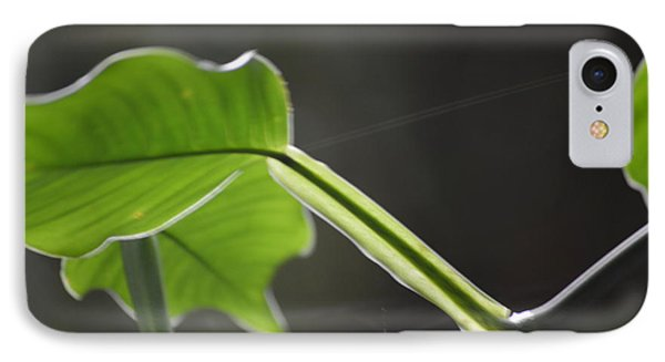 Growing In The Light IPhone Case