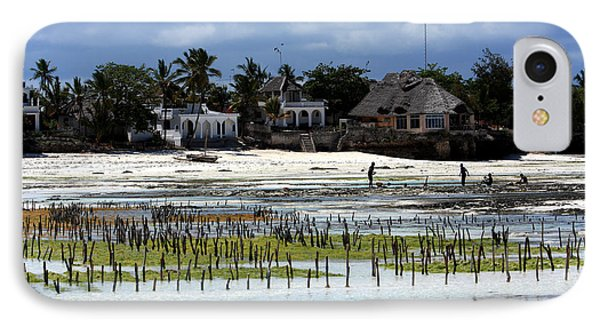 Growing Seaweed On Zanzibar Island IPhone Case by Aidan Moran