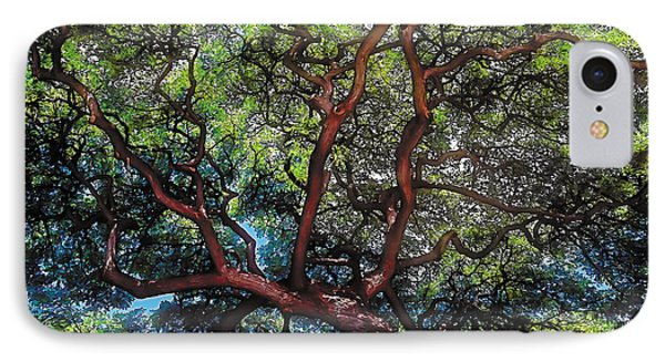 Growth IPhone Case by Terry Reynoldson