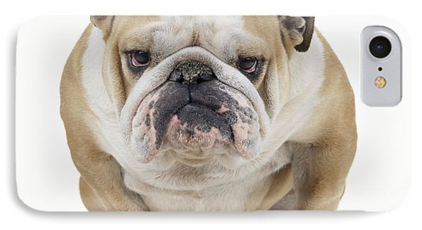 Grumpy Bulldog IPhone Case by John Daniels
