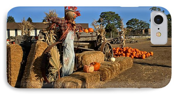 IPhone Case featuring the photograph Guarding The Pumpkin Patch by Michael Gordon