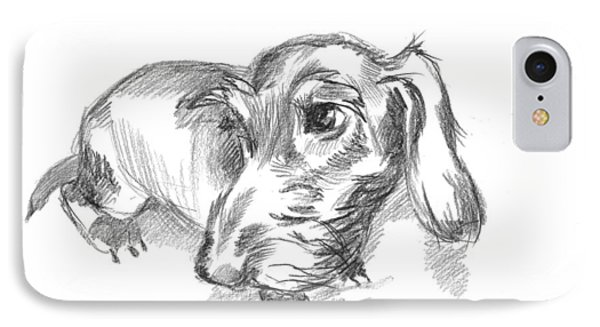 Guilty-looking Young Wire-haired Dachshund IPhone Case
