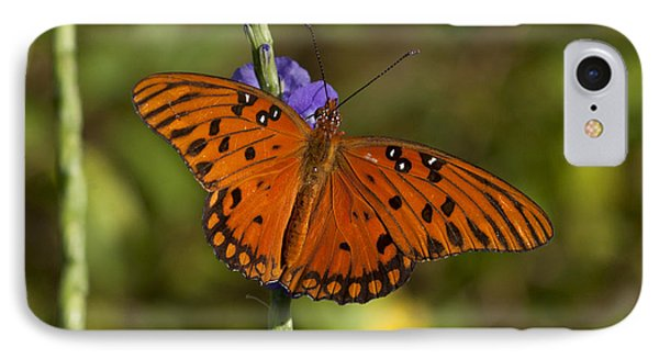 IPhone Case featuring the photograph Gulf Fritillary Butterfly by Meg Rousher