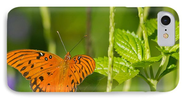 IPhone Case featuring the photograph Gulf Fritillary by Jane Luxton