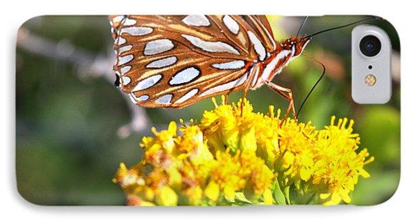 Gulf Fritillary On A Flower IPhone Case