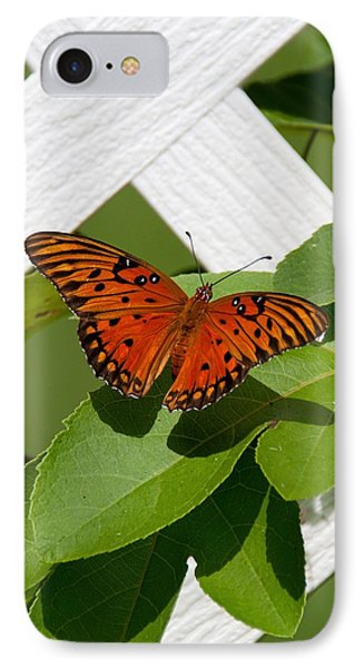 Gulf Fritillary On Passion Flower Vine IPhone Case by John Black