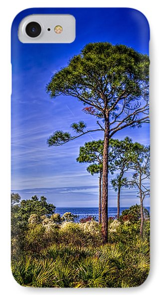 Gulf Pines IPhone Case by Marvin Spates
