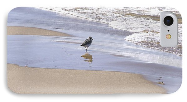 Gull On The Shore Phone Case by Richard Gregurich
