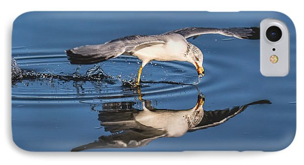 IPhone Case featuring the photograph Gull Reflection by Susi Stroud