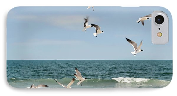 Gulls A Dance'n IPhone Case by Diana Angstadt