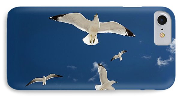 Gulls Flying Against Blue Sky IPhone Case