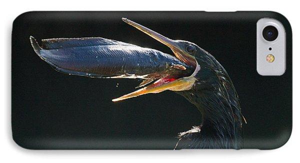 Gulp IPhone Case by Doug McPherson