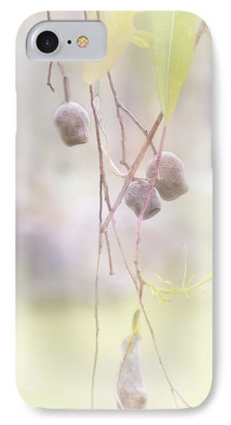 IPhone Case featuring the photograph Gum Nuts by Elaine Teague