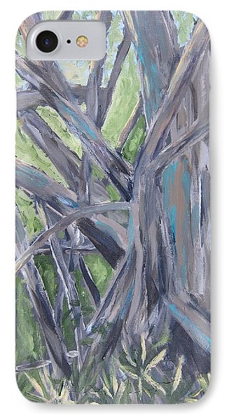 Gumbo Limbo Park Banyan Tree IPhone Case by Kathryn Barry