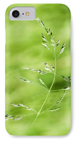 Gust Of Wind - Featured 3 IPhone Case by Alexander Senin