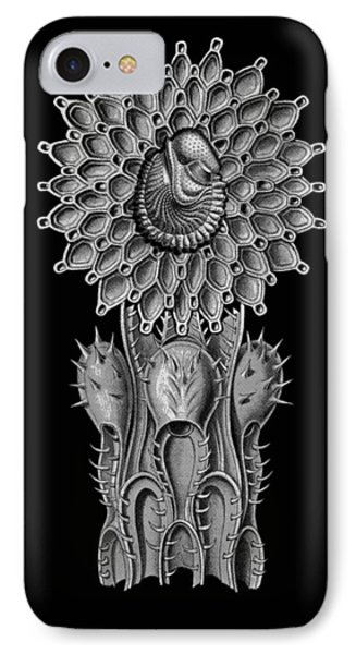 IPhone Case featuring the digital art Haeckel Collage by Christophe Ennis