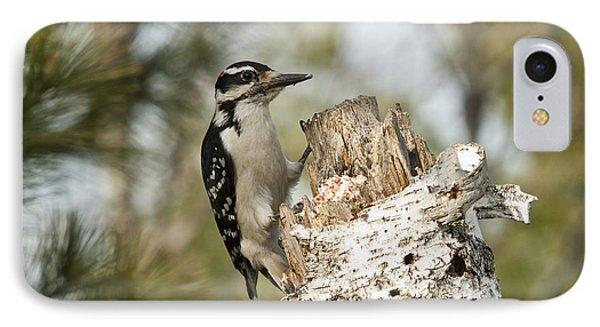 Hairy Woodpecker Phone Case by Linda Freshwaters Arndt