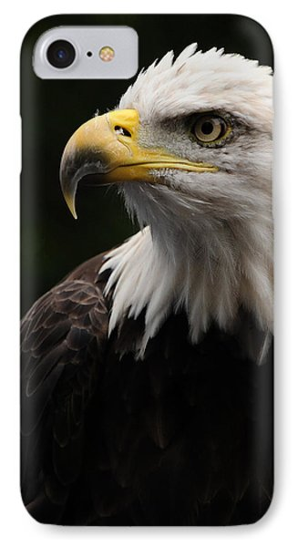 Haliaeetus Laucocephalus IPhone Case by Mike Martin
