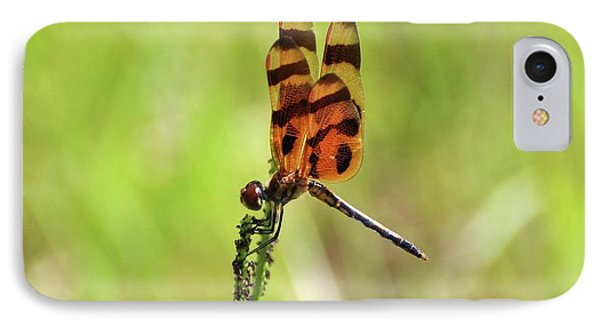 Halloween Pennant IPhone Case by Al Powell Photography USA