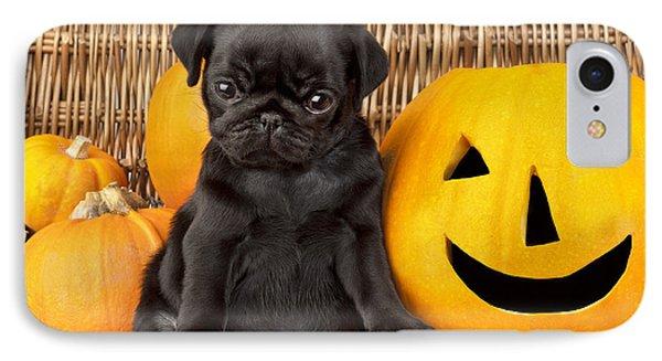 Halloween Pug Phone Case by Greg Cuddiford