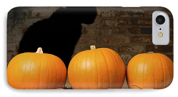 Halloween Pumpkins And The Witches Cat Phone Case by Amanda Elwell