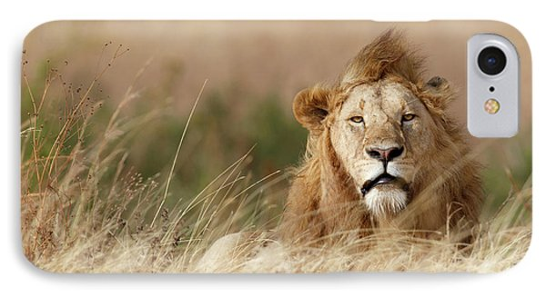 Lion iPhone 7 Case - Handsome! by Ali Khataw