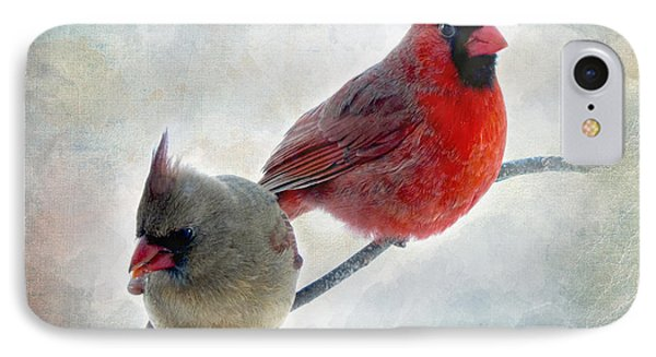 Handsome Couple IIi Phone Case by Debbie Portwood