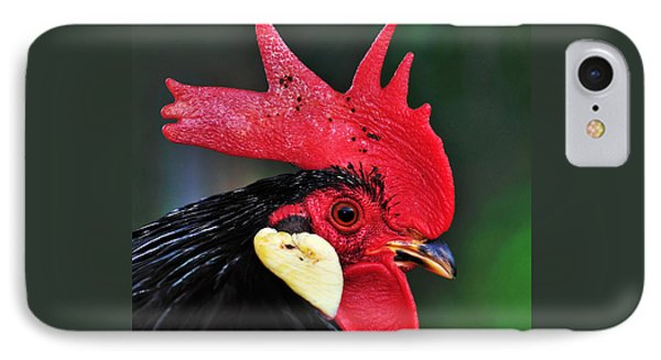 Handsome Rooster Phone Case by Kaye Menner