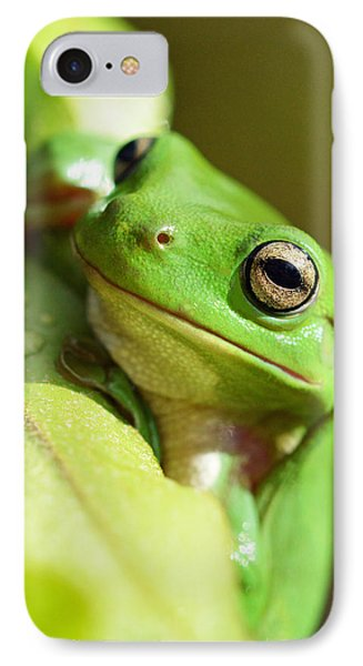 Hang In There Frog IPhone Case