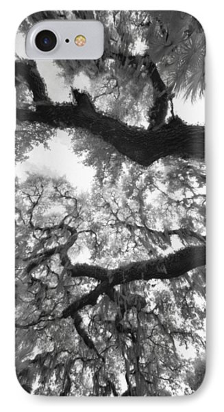 IPhone Case featuring the photograph Hanging Moss by Bradley R Youngberg