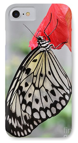 IPhone Case featuring the photograph Hanging On #2 by Judy Whitton