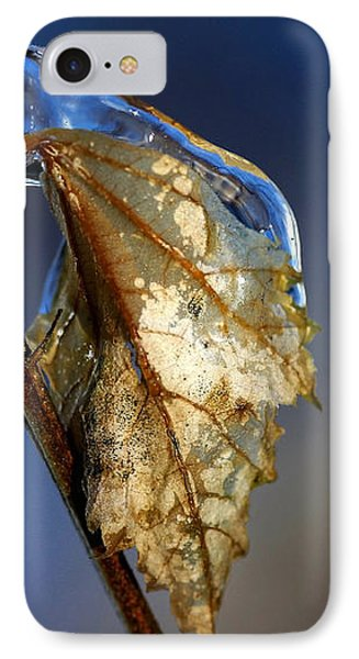 IPhone Case featuring the photograph The Last Leaf  by Debbie Oppermann