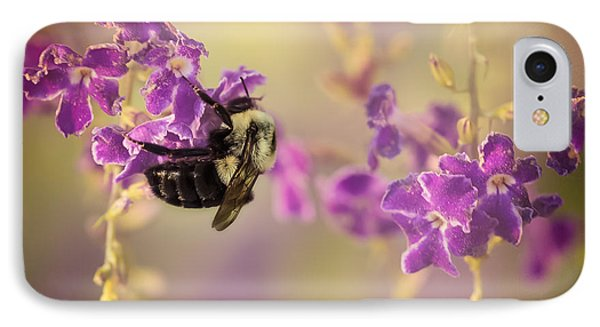 Hanging On IPhone Case by Maria Robinson