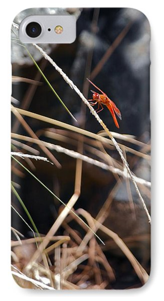 IPhone Case featuring the photograph Hanging On by Michele Myers