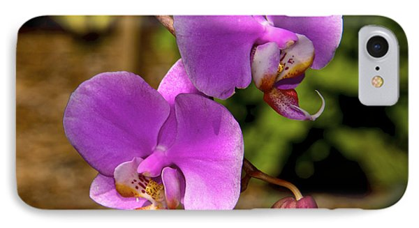 Hanging Orchids IPhone Case