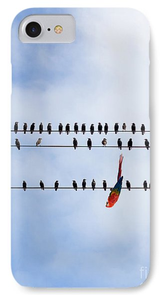 Hanging There Phone Case by Les Palenik