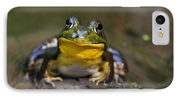 Happiness Frog Phone Case by Christina Rollo