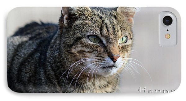 Happy Birthday Tabby IPhone Case by Michele Wright