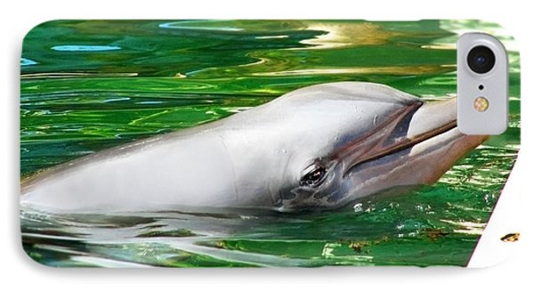 Happy Dolphin IPhone Case by Kristine Merc