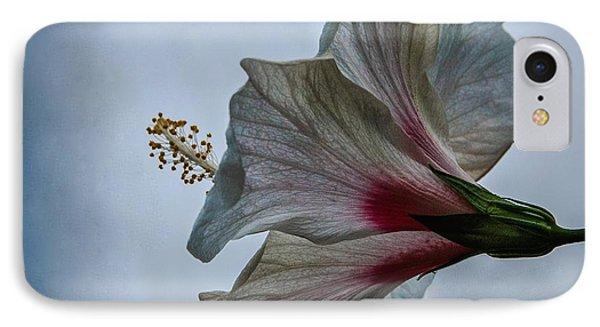 Happy Hibiscus At Biltmore Conservatory IPhone Case