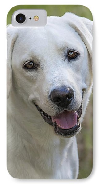 IPhone Case featuring the photograph Happy Lab by Stephen Anderson