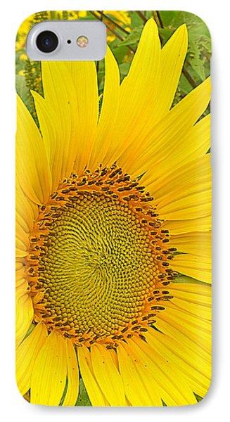 Happy Sunflower IPhone Case